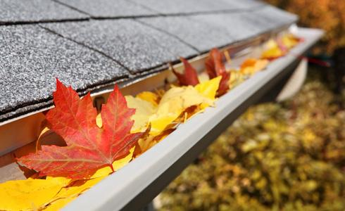 all-seasons-maintenance-eaves