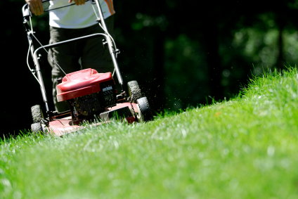 all-seasons-maintenance-grass_cutting